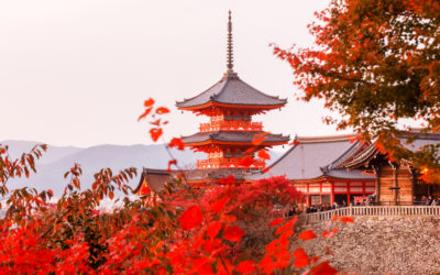 Top 10 photo spots in Kyoto