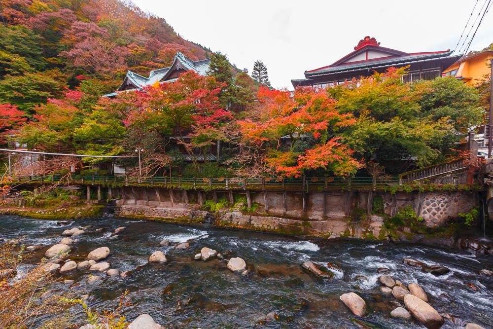 Fuji hakone pass18