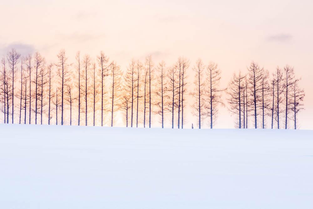 Japan Hokkaido winter blog web07