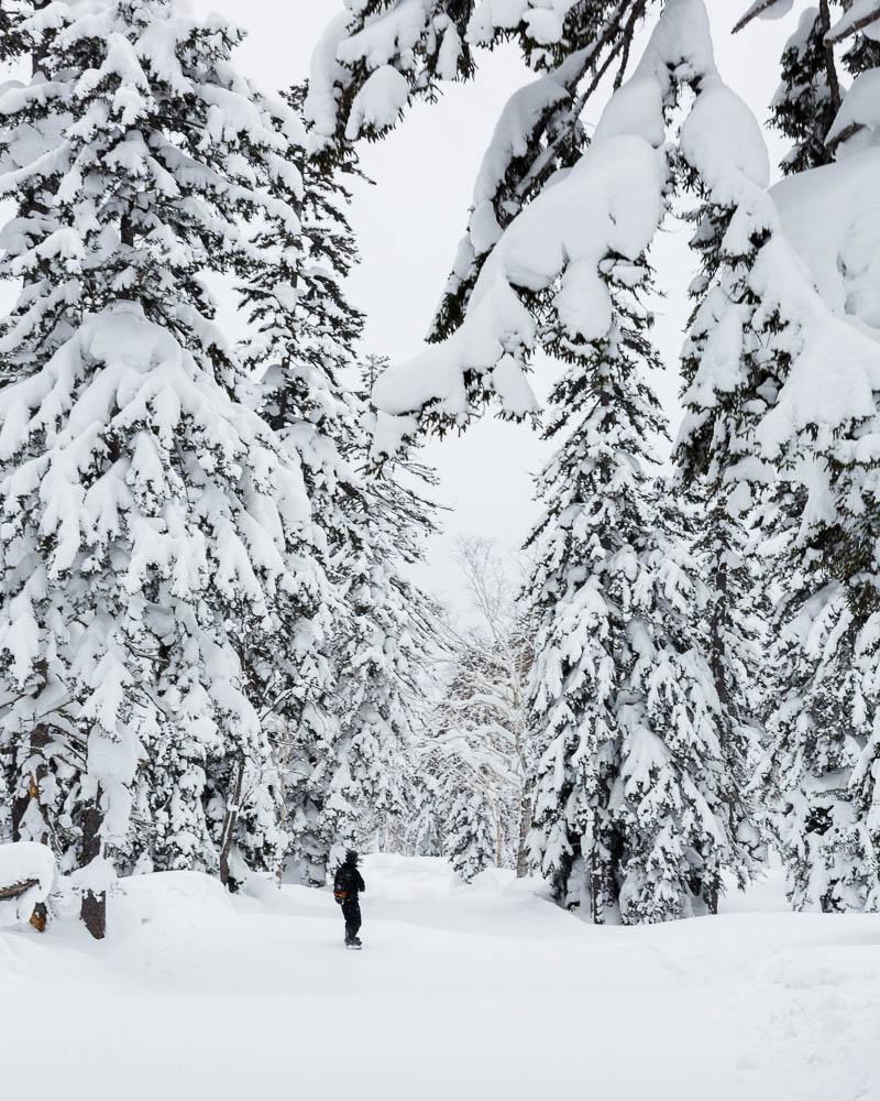 Japan Hokkaido winter blog web10