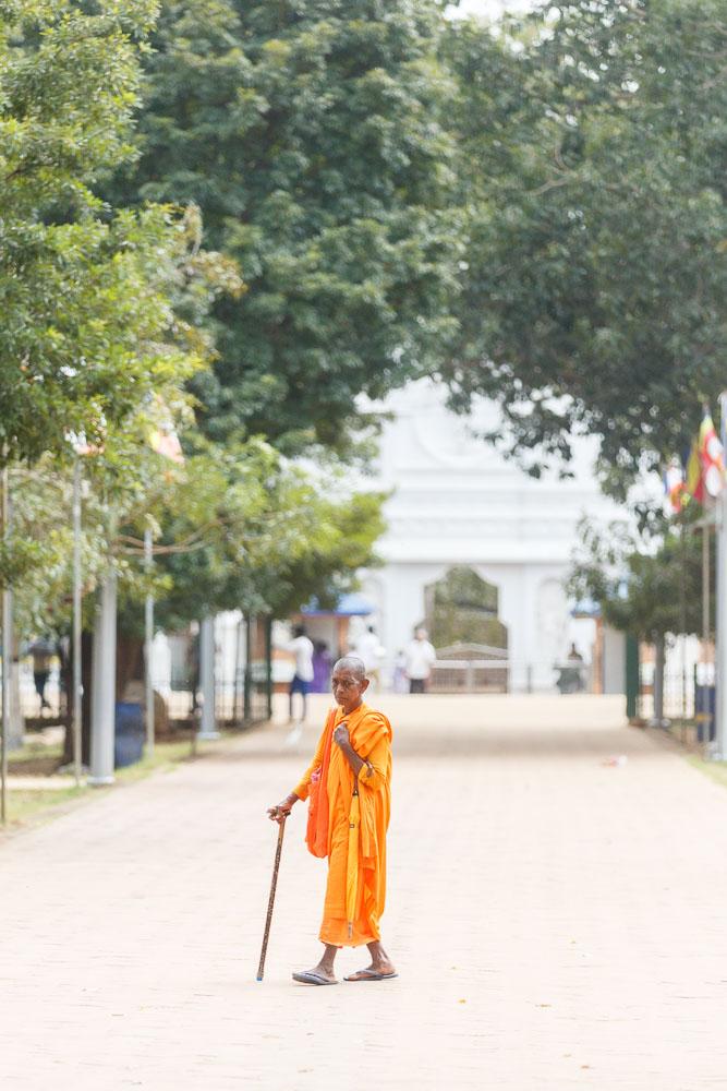 Sri Lanka photo tour 52