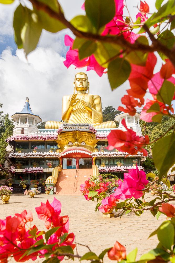 Sri Lanka photo tour 66