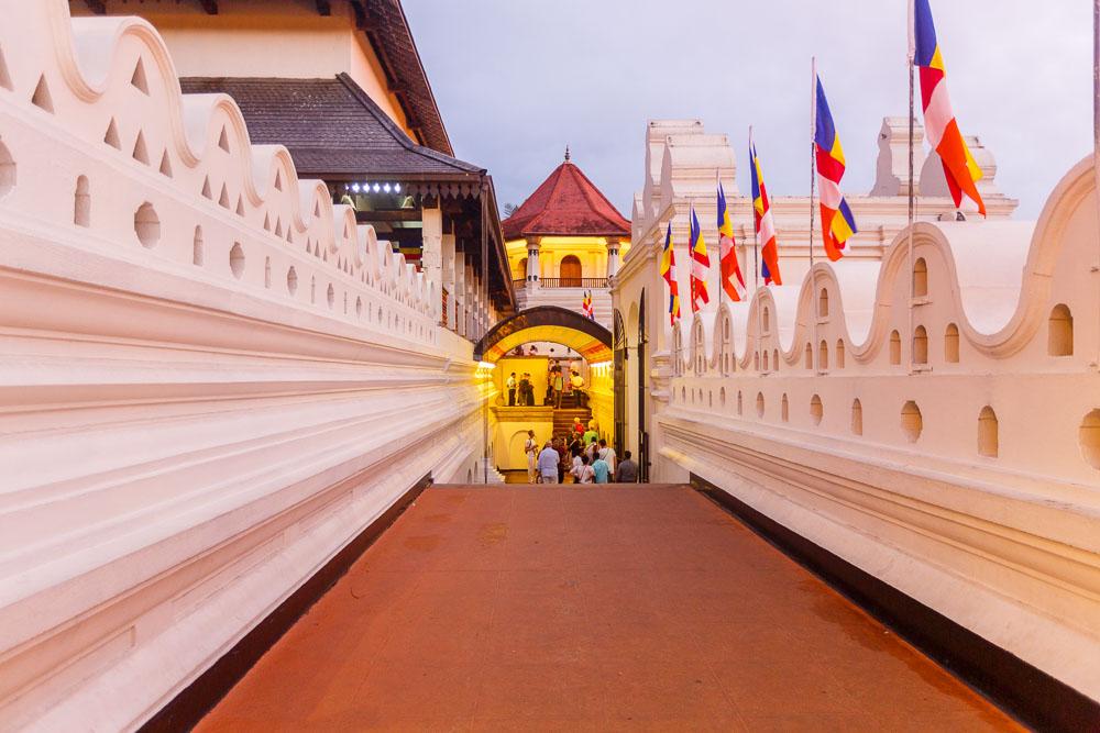 Sri Lanka photo tour 68