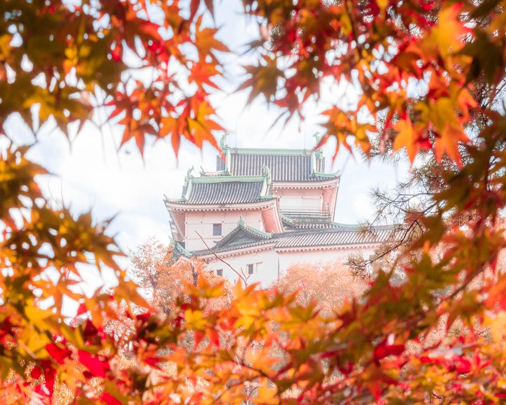 Wakayama city kansai 01-3