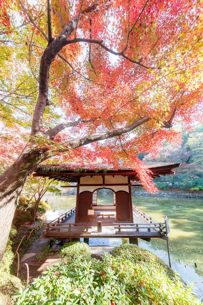 Wakayama city kansai 09