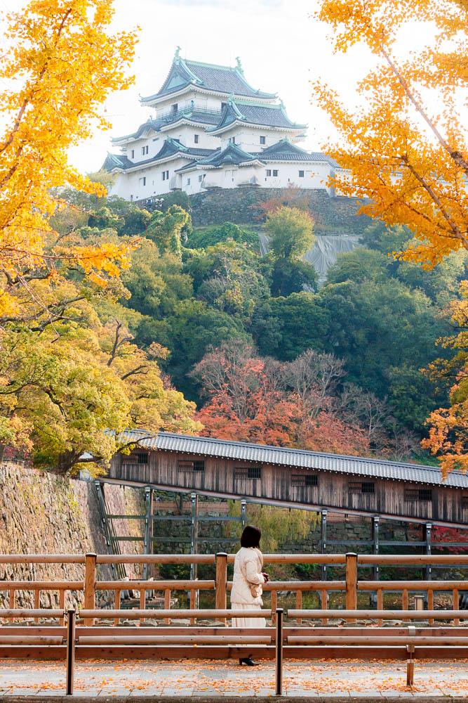 Wakayama city kansai 17