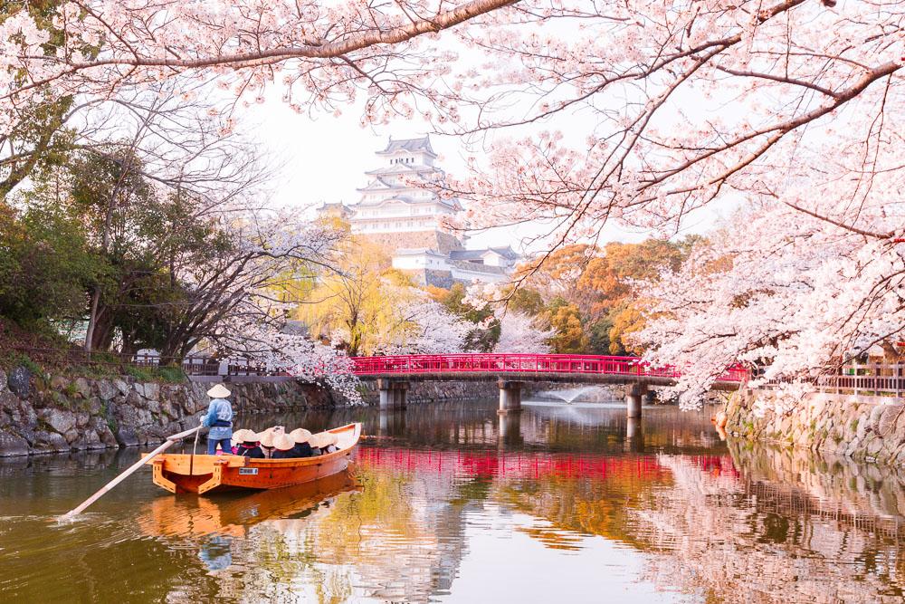 Himeiji Castle Japan spring 03