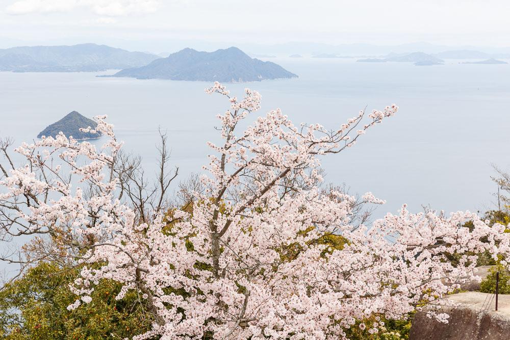 Japan Miyajima misen