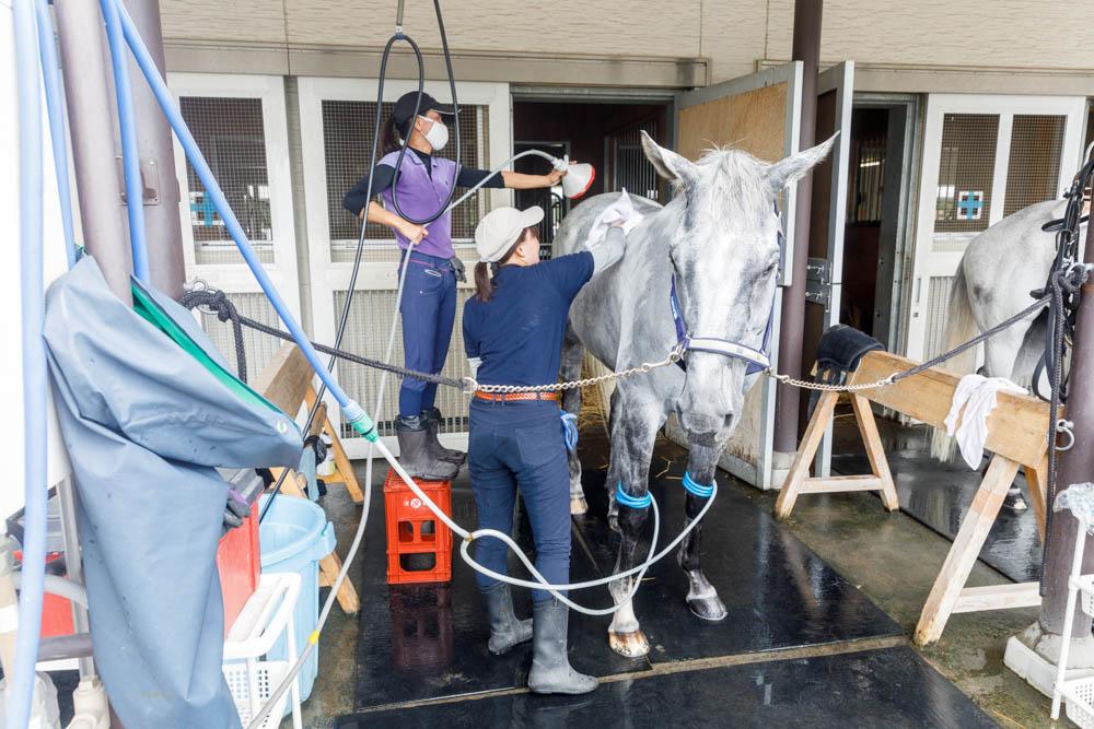 Fuchu Tokyo Japan Loïc Lagarde 18