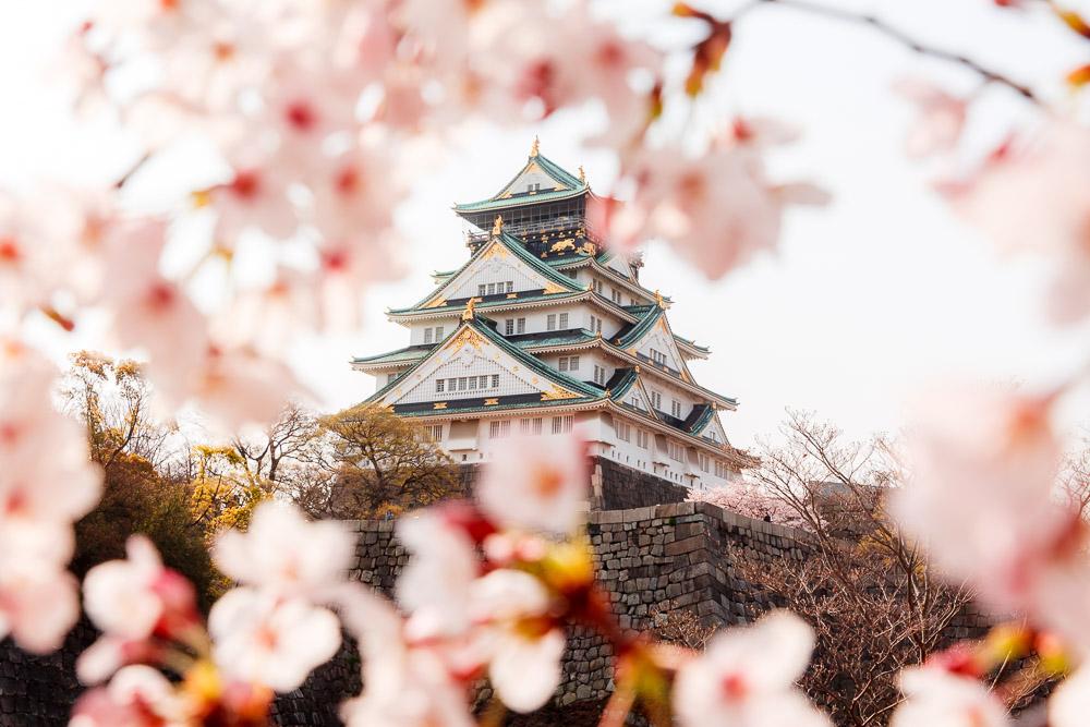Japan Cherry Blossom Loic Lagarde Osaka Castle