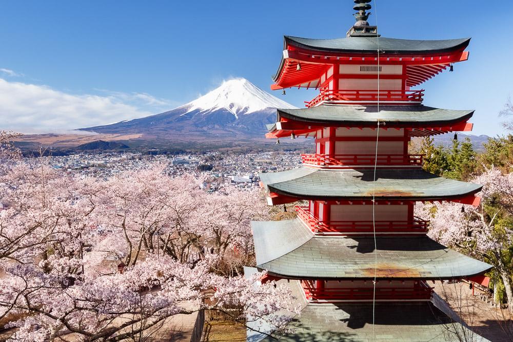 Japan Cherry Blossom Loic Lagarde Chureito Pagoda