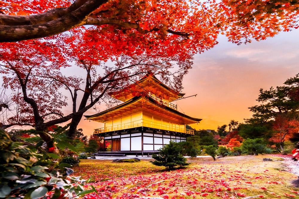 Japan momiji autumn Loic Lagarde Kyoto kinkakuji