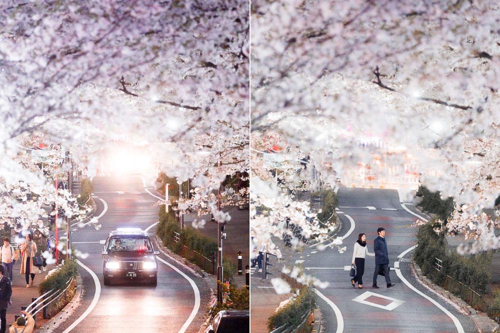 Tokyo Japan Cherry Blossom Top 10 Loic Lagarde 07