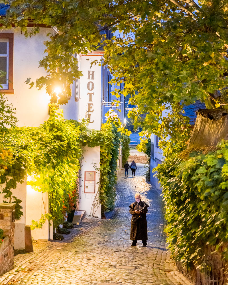 Rhine Rhin Romantique Loic Lagarde Germany Allemagne UNESCO 24