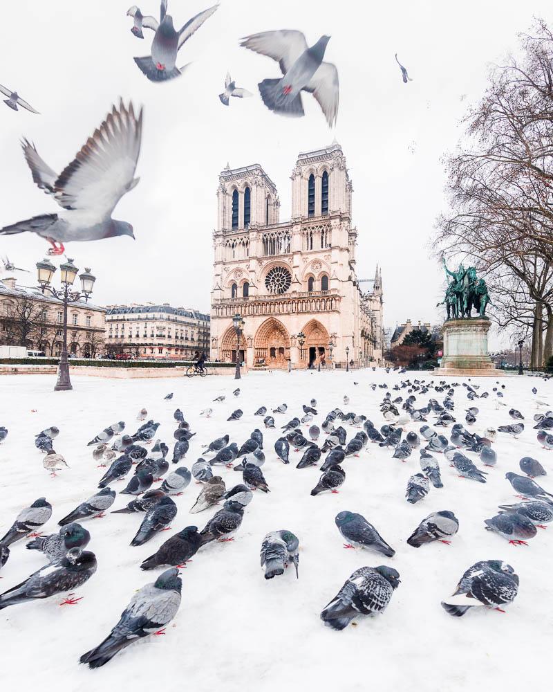 Snow in Paris - Paris sous la neige - Loic Lagarde -41