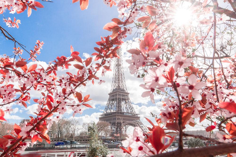 Paris Sping Printemps loic lagarde -19 - Tour Eiffel quai de seine early march