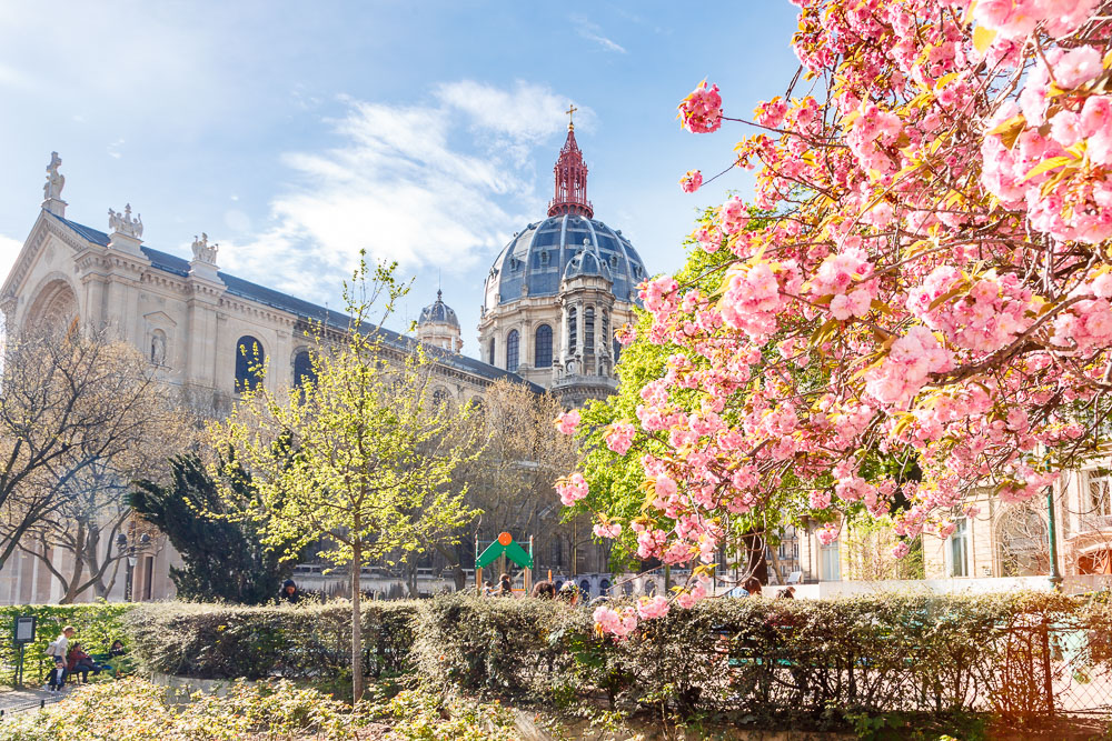 Paris Sping Printemps loic lagarde-9 - St augustin early mid april